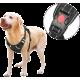 Arnés anti tirones para perro